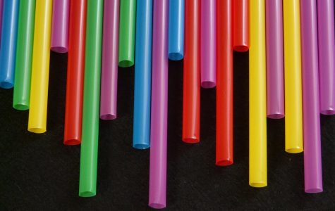 Are You a Fan of a Plastic Straw Ban?
