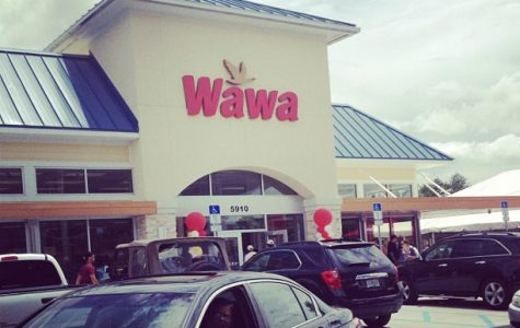 Wawa: The New Store You Never Knew