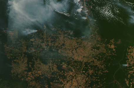 Amazon Rainforest on Fire