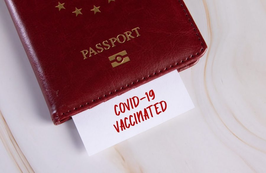 What You Should Know About Covid Passports