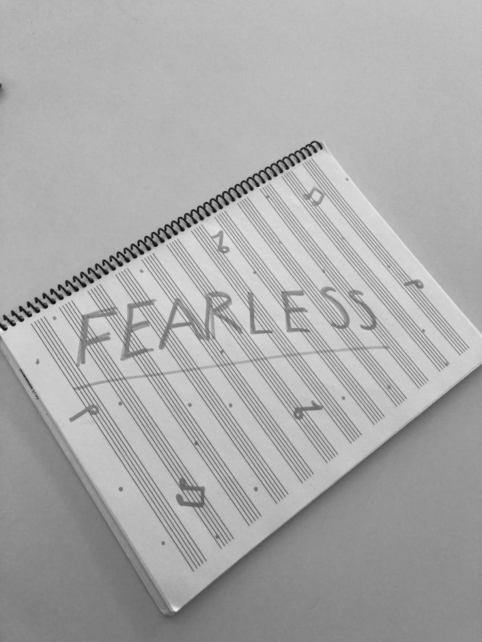 Taylor Swift's New/Old Album: Fearless