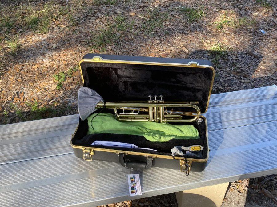 Instrument+in+Instrument+Case
